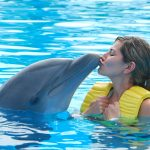 woman-kissing-dolphin
