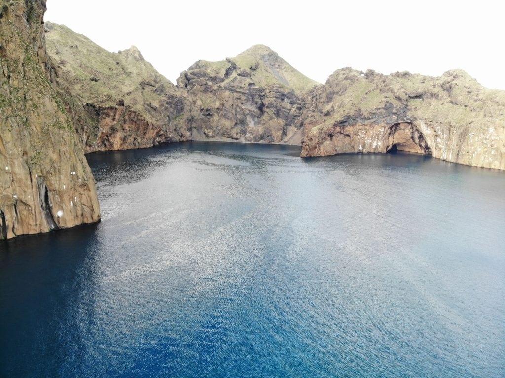 beluga-sanctuary-bay