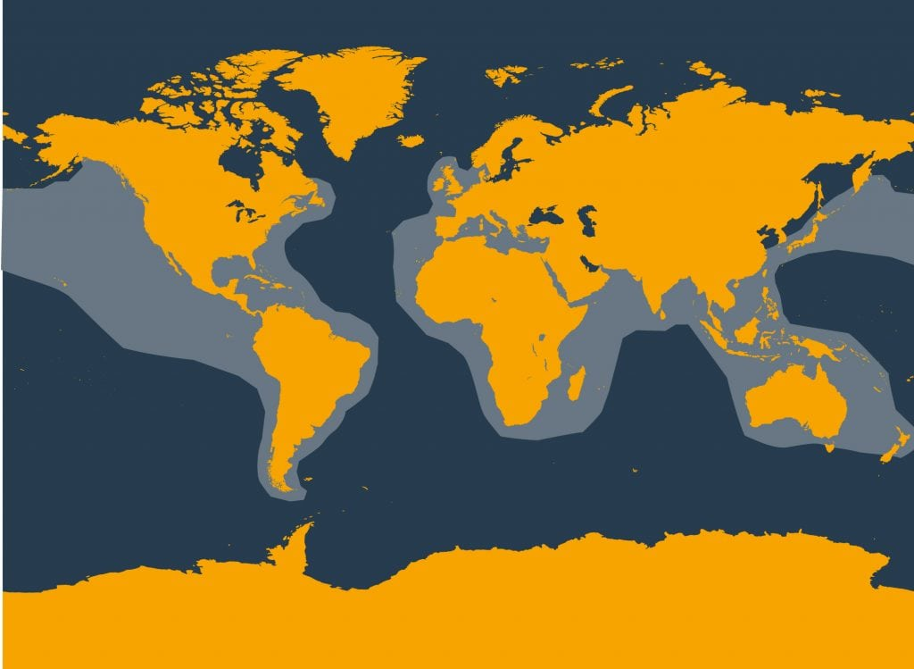 Risso's dolphin distribution map