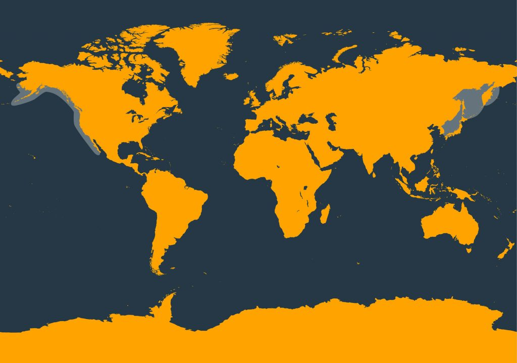 North Pacific right whale distribution map