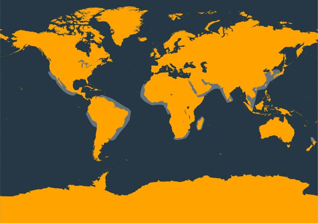 Long-beaked dolphin common distribution map
