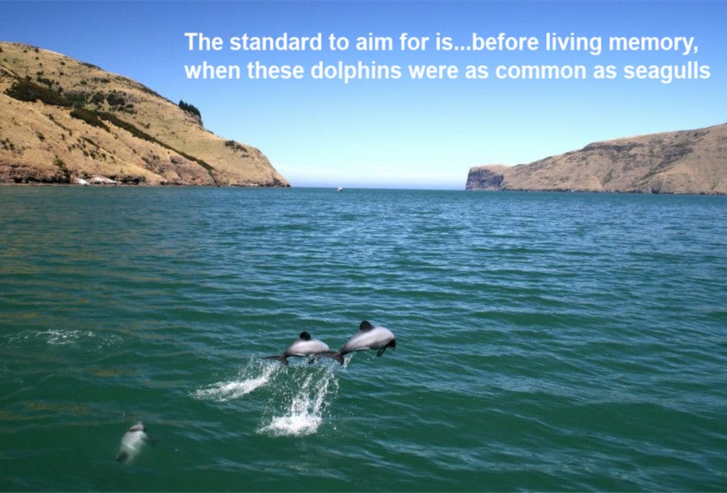 How many New Zealand dolphins should there be and how high should we be setting our conservation goals?