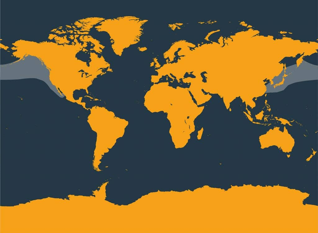 Pacific white-sided dolphin distribution map
