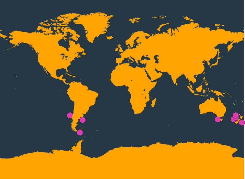 Shepherd's beaked whale distribution map