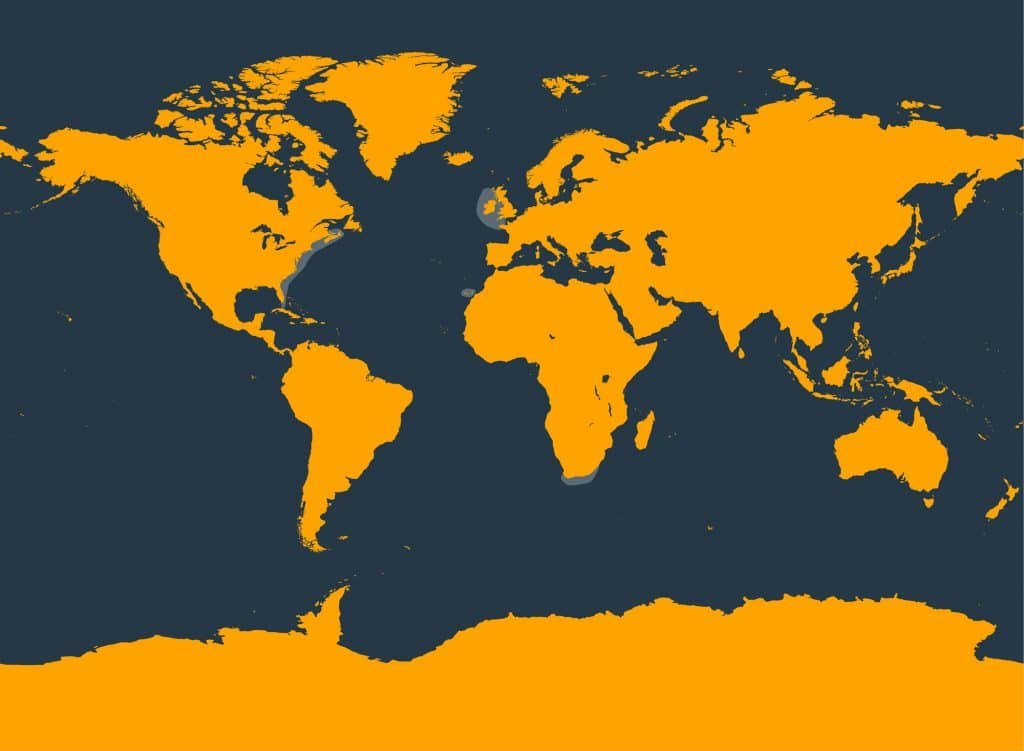 True's beaked whale distribution map